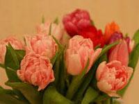 Топ 10 подарков на 8 марта